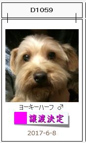 アナ譲渡決定.png